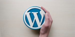 WordPress-9